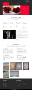 Сайт компании ритуальных услуг - rip55.ru